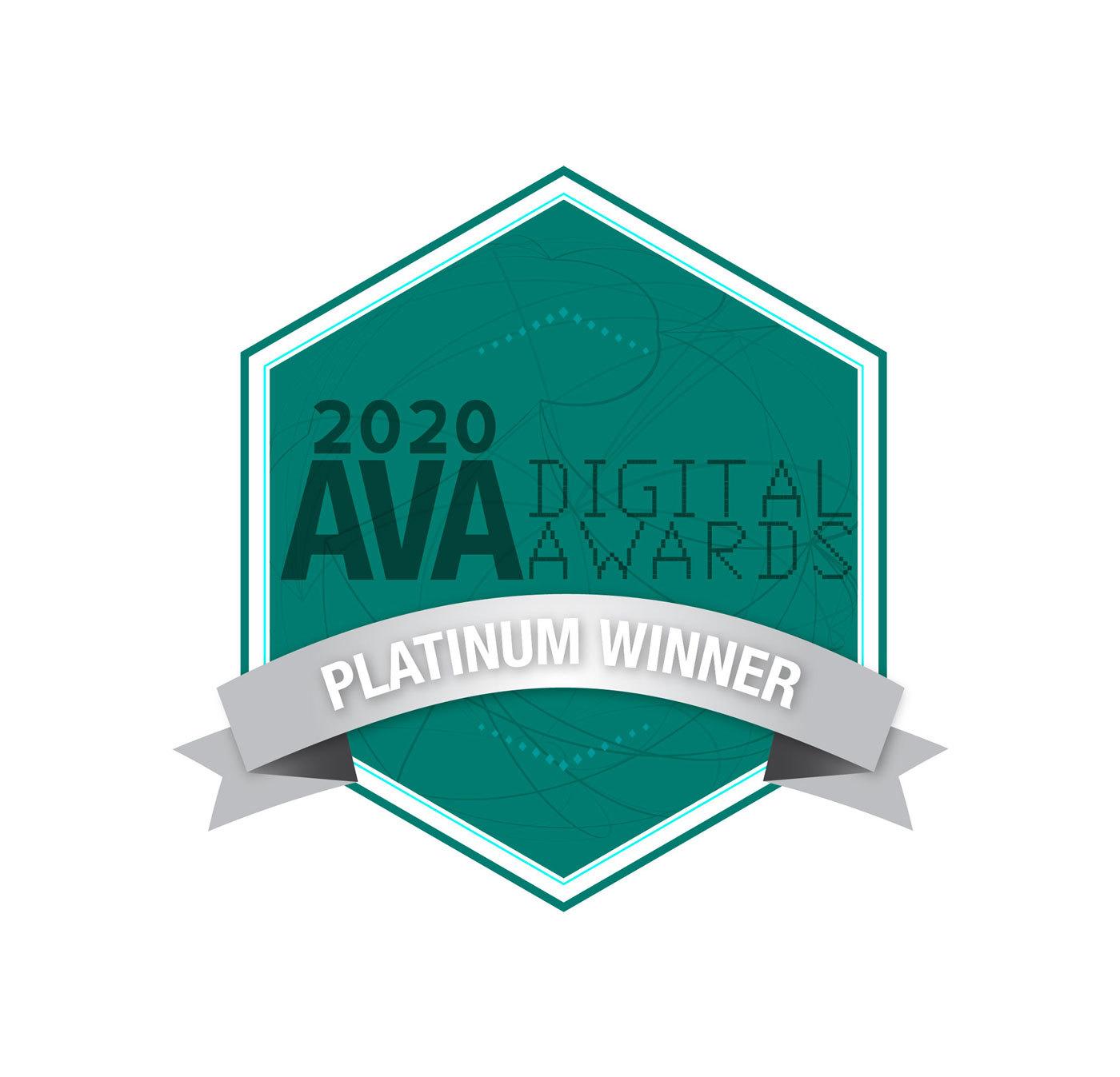 Academy of Visual Arts 2020 Platinum Award Winner
