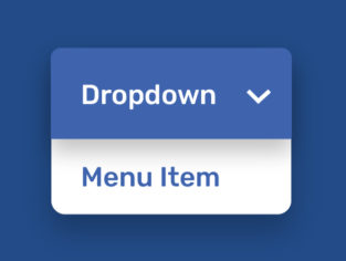 Does Your Website Navigation Pass the Test? - Dropdown Menu